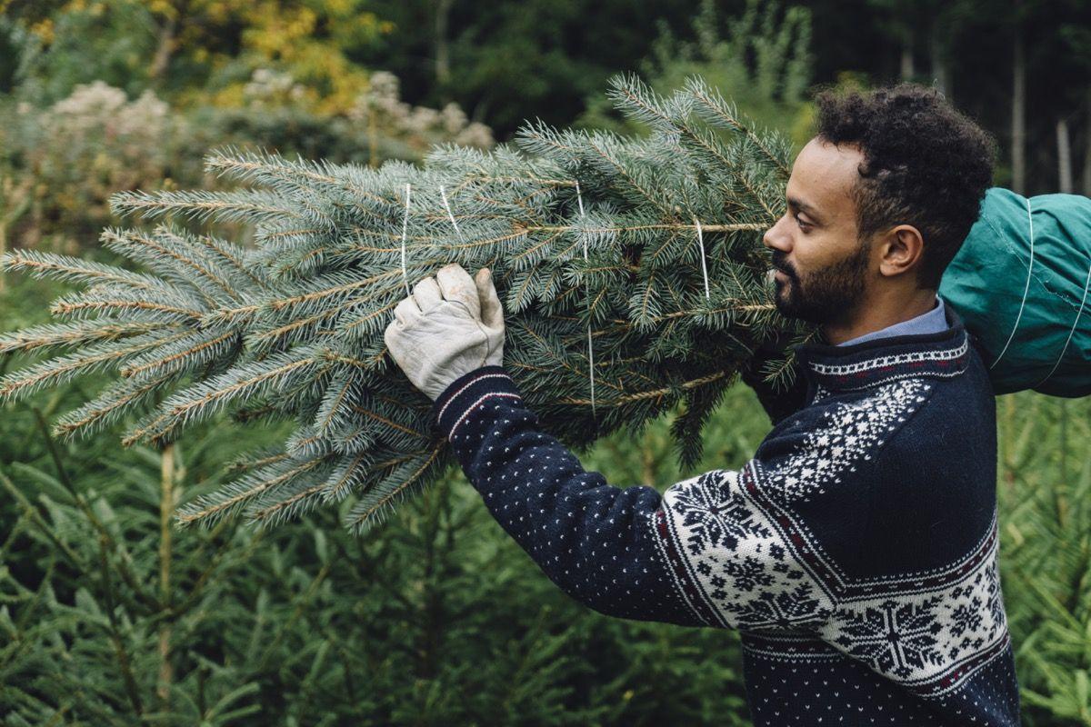 20 consejos geniales para decorar árboles de Navidad, según los expertos